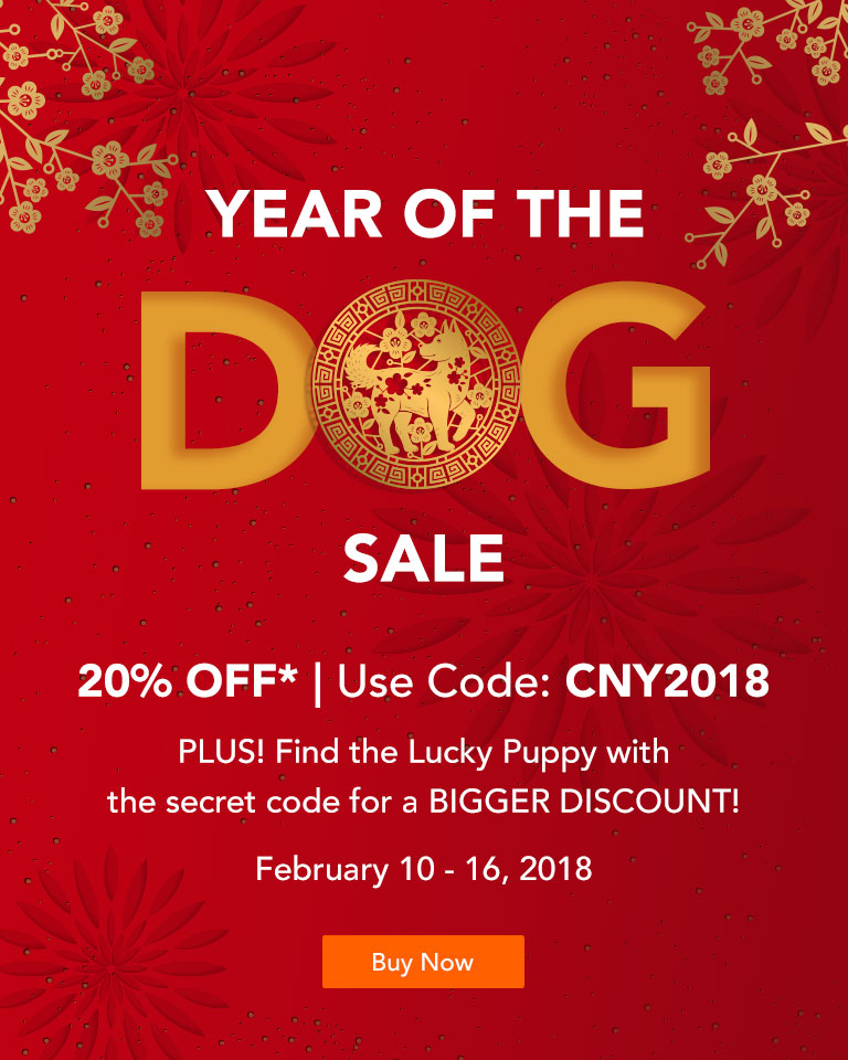 Chinese New Year (Year of the Dog)