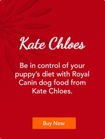 Kate Chloes