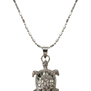 BOTH STYLE PROTECT ME PLEASE TURTOISE NECKLACE (COLOR SILVER)