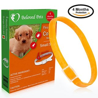 Beloved Pets Flea&Tick Collar (100% Safe and effective) - Flea Control Collar for Dogs and Puppies. Quick and long lasting protection. Kills Flea, Ticks and bugs effectively (UP TO 18 LB, ORANGE)