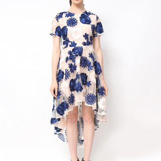 Host Blue And Pink Lace Dress Long Back