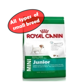 ROYAL CANIN MINI JUNIOR DOG DRY FOOD