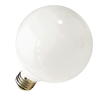 9 Watts LED Globe Bulb (Warm White) ALED-GB-9WW