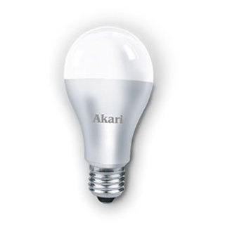20 Watts LED Super Bulb (ALED-SB20WW)