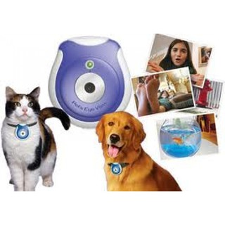 Digital Mini Pet Eye View Camera