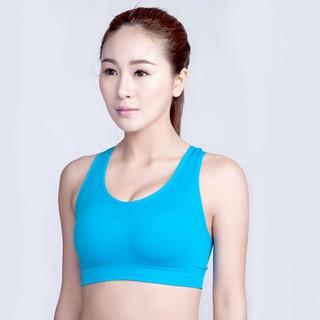 Female Sport Bra Large - Blue