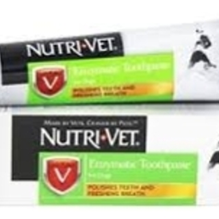 Nutri-Vet Enzymatic Chicken Flavored Canine Toothpaste, 2.5 Oz