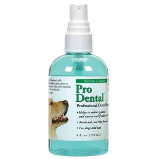 Top Performance ProDental Dental Spray 4oz