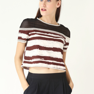 Leila & Luli Striped Crop Top With Mesh LL0035 (Brown)